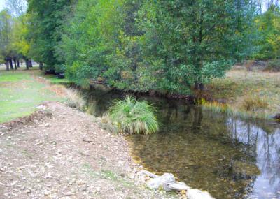 Río Turienzo